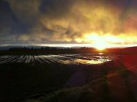 light ray sun rise