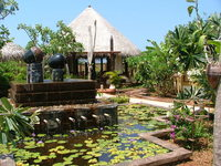 Asia water garden