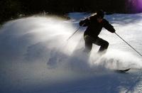 Alpine skiing 4
