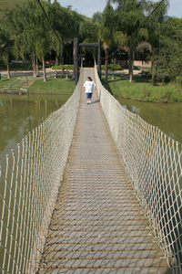 wood bridge 5
