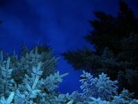 fir by night