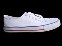 friends shoe