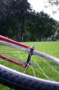 bikeparkview