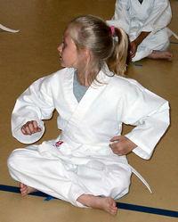 Karate Lesson 2