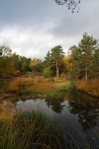 nature Norway 2