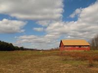 Barn & Field