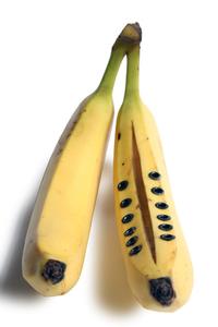 Laced Banana- 1