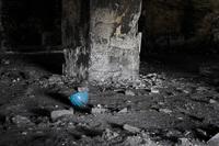 coal sorter factory 12
