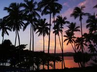 tropical Fiji island 1