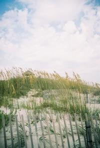 On the beach 5
