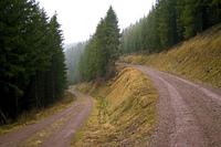 trade road