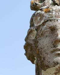 statue and lichen
