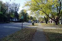 Lonely Memphis