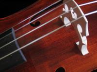Cello Detail 3