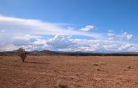 Desert Sky