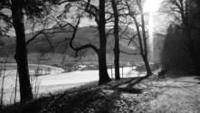 Soll - Austria - Backwoods