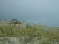 Vacation at the beach
