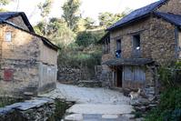 Village Life 1