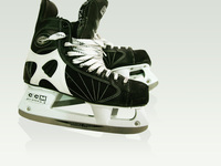 Ice Skates No.2