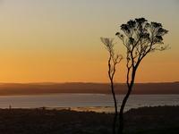 Mt Eden Sunset