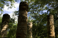 Colums