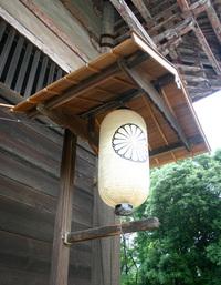 Japanese Lanterns 5