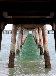 revO the bridge