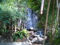 Barcelo Pearl Farm Resort 4