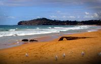 monavale beach