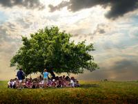 Kids under tree