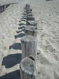 Various beach photos 2