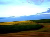 Prairie Blur