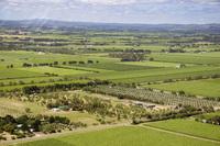 Vineyards in South Australia
