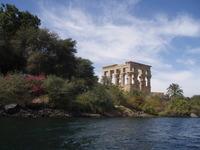 phila temple