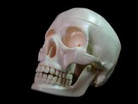 Skull... W/ mask