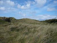 Dunes of West Jutland, DK