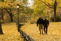 Autumn in New York 4
