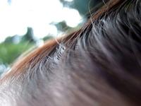 Hair Series 2