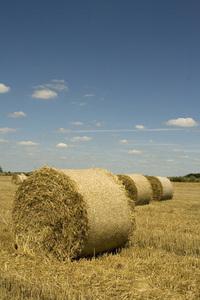 Harvest session::.. 4