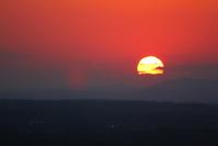 Red Violet Close Sunset - VA