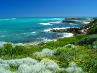 Coastline nature