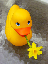 Daffi Duck