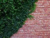 brick'n green