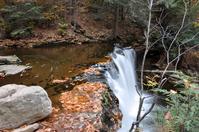 Glen of many falls