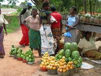 Zambian Fruit Market