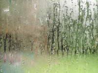 Dirty, wet windows 1