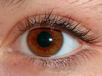 Eye large