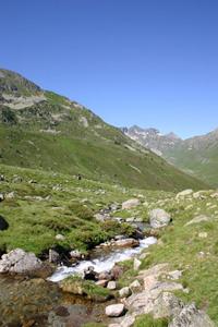 pyrenees 6 - france