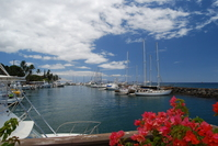 Maui Marina