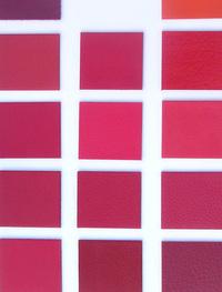 Colour Grid 2